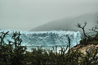 ice field near calafate