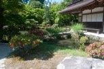 shogun garden