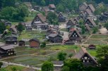 thatched house and rice fields